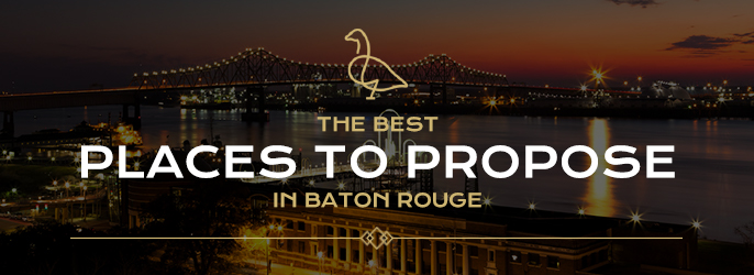 The 14 Best Places To Propose In Baton Rouge The Gregory
